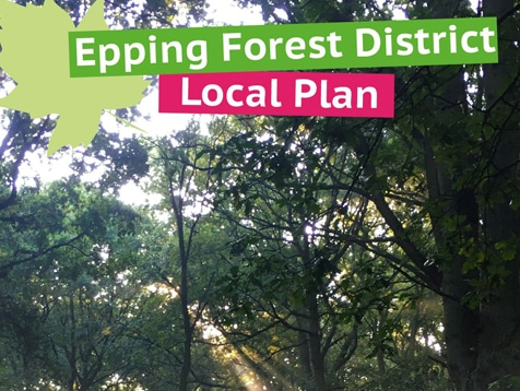Epping Forest Local Plan Examination: Hanging On For Sangs